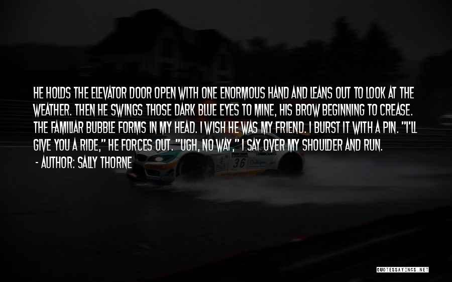 Elevator Door Quotes By Sally Thorne