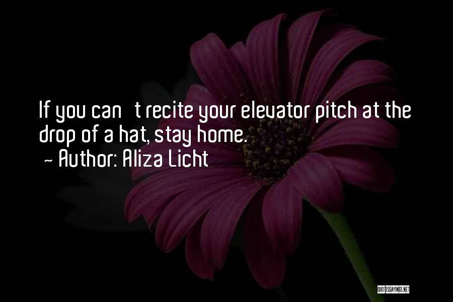 Elevator Pitch Quotes By Aliza Licht