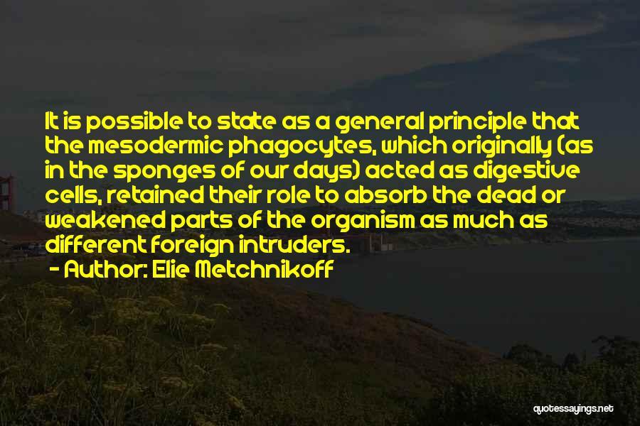 Elie Metchnikoff Quotes 1827725