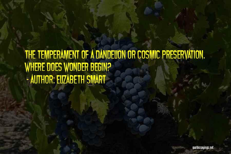 Elizabeth Smart Quotes 1048692