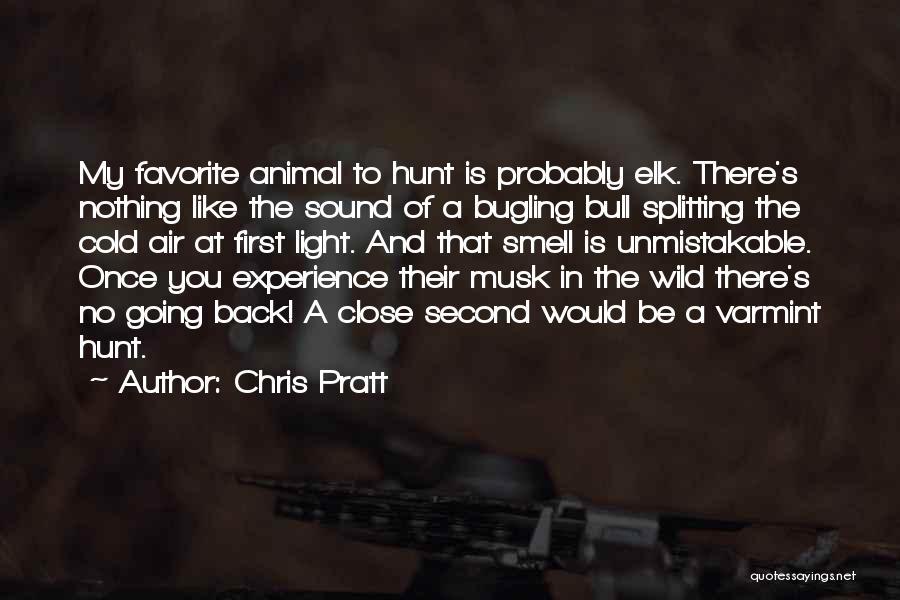 Elk Animal Quotes By Chris Pratt