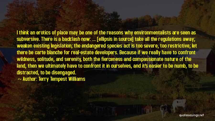 Ellipsis In Quotes By Terry Tempest Williams