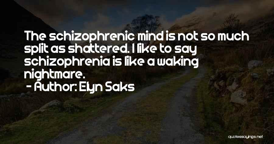 Elyn Saks Quotes 1587140