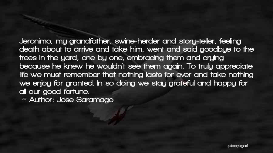 Embracing Death Quotes By Jose Saramago