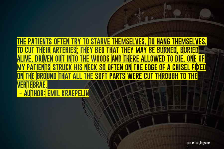 Emil Kraepelin Quotes 2185326
