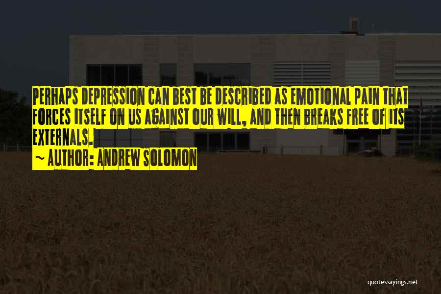 Emotional Pain Quotes By Andrew Solomon