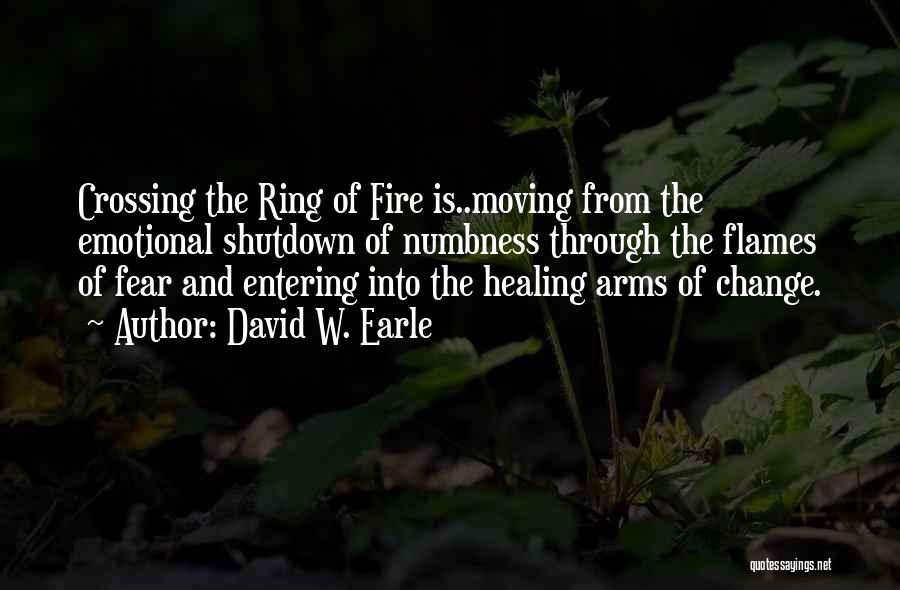Emotional Pain Quotes By David W. Earle