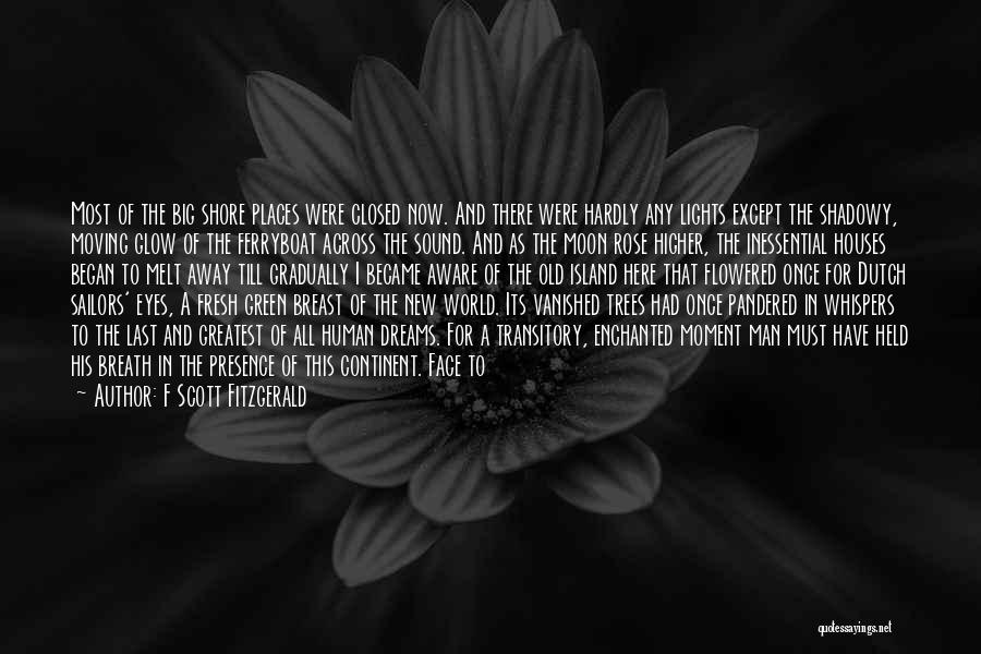 Enchanted Rose Quotes By F Scott Fitzgerald