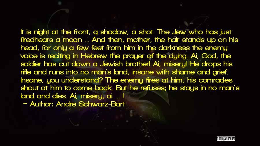 Enemy Brother Quotes By Andre Schwarz-Bart