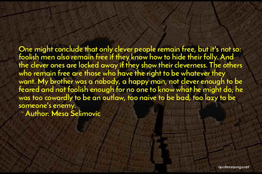 Enemy Brother Quotes By Mesa Selimovic