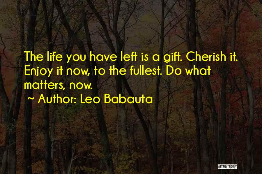 Enjoy Life Fullest Quotes By Leo Babauta