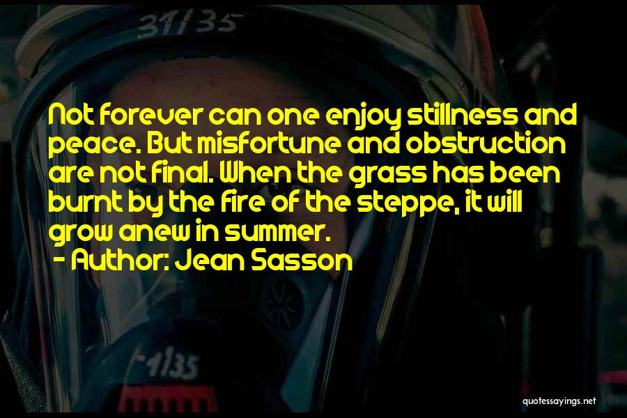 Enjoy The Summer Quotes By Jean Sasson