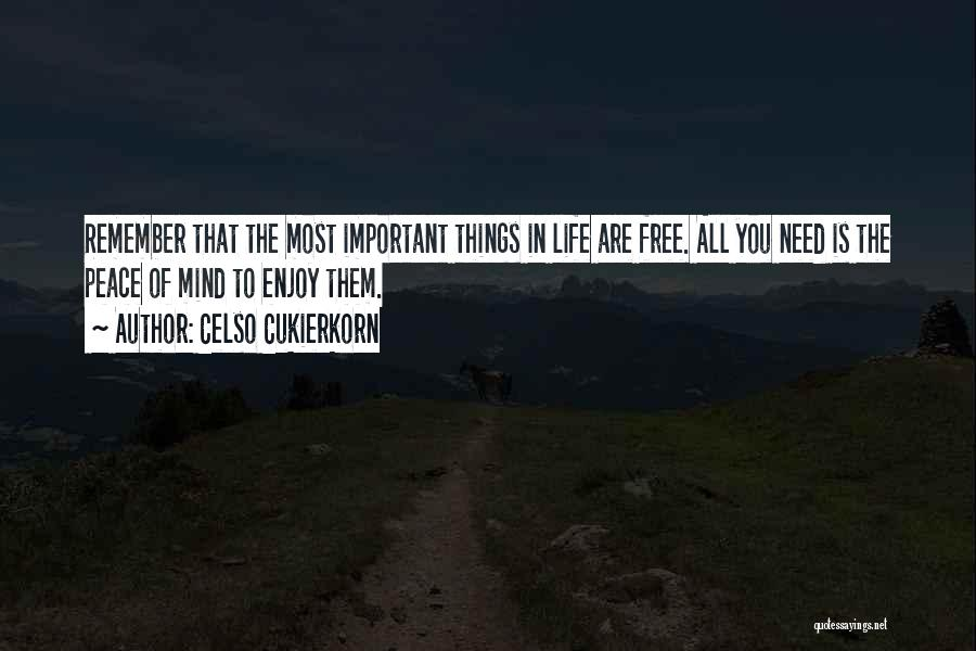 Enjoy Your Life Without Me Quotes By Celso Cukierkorn