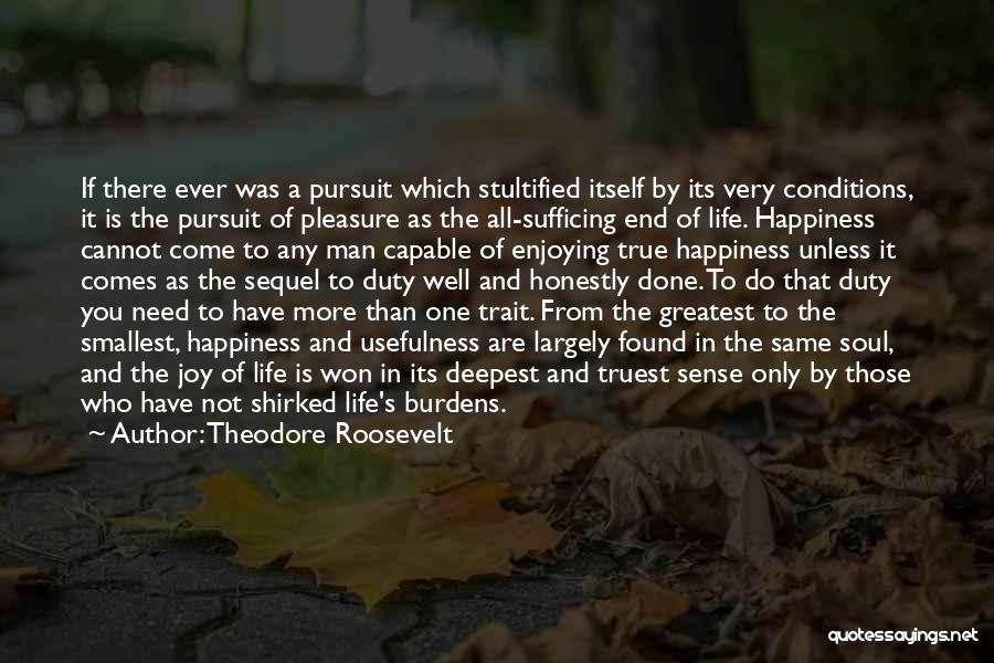 Enjoying Life As It Is Quotes By Theodore Roosevelt