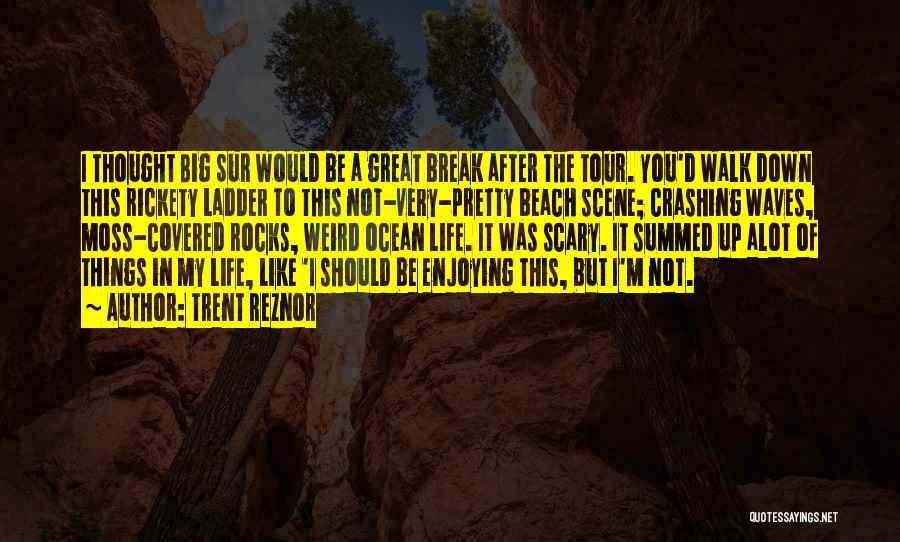 Enjoying Life As It Is Quotes By Trent Reznor