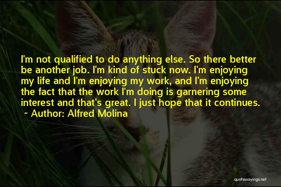 Enjoying Life Now Quotes By Alfred Molina