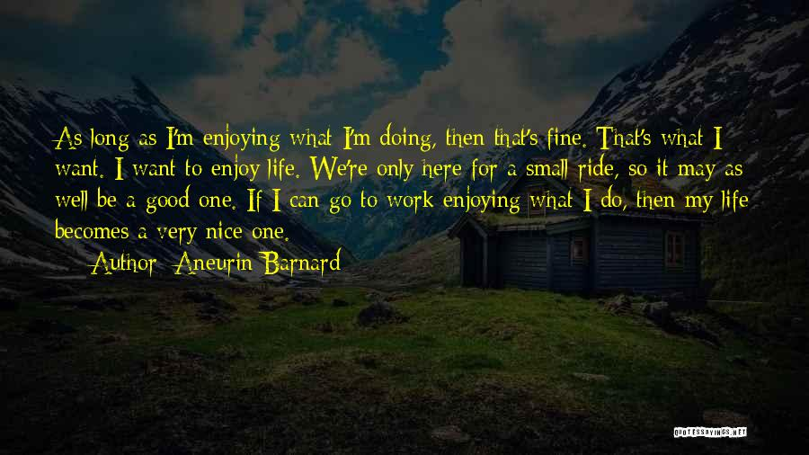 Enjoying Small Things In Life Quotes By Aneurin Barnard