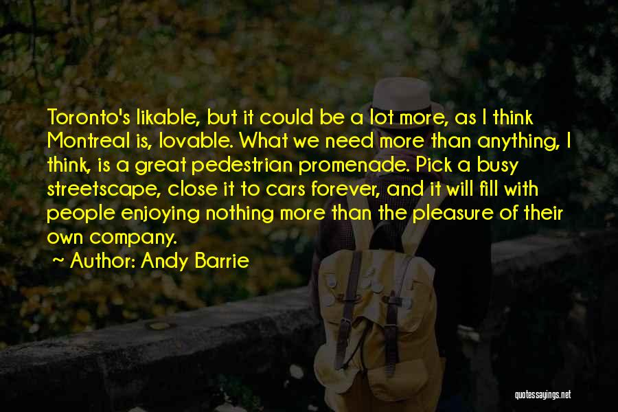 Enjoying Your Own Company Quotes By Andy Barrie