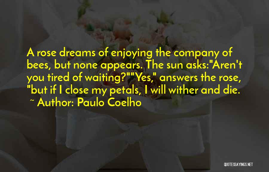 Enjoying Your Own Company Quotes By Paulo Coelho