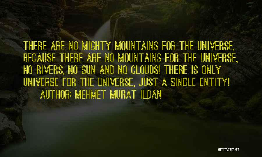 Entity Quotes By Mehmet Murat Ildan