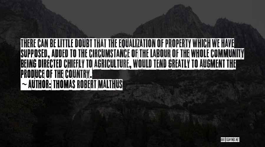 Equalization Quotes By Thomas Robert Malthus