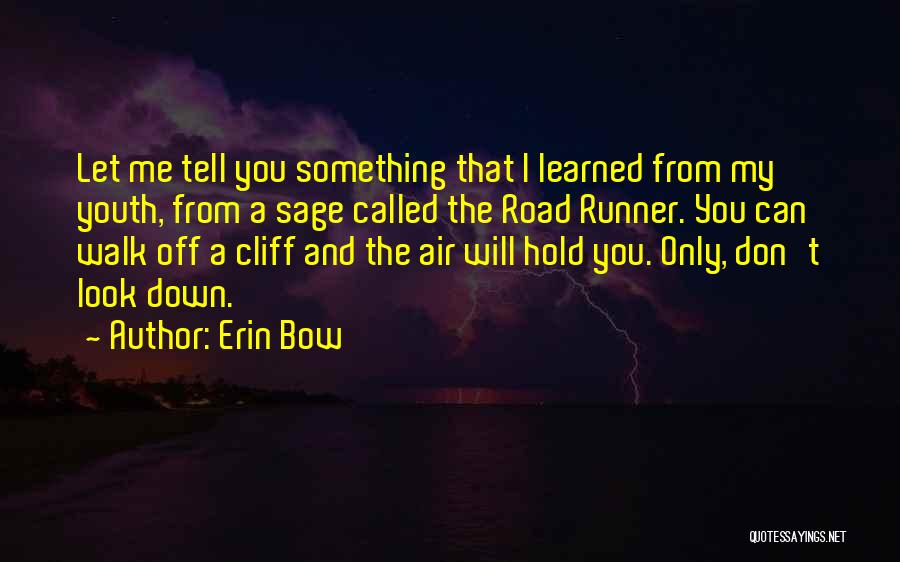 Erin Bow Quotes 1725857
