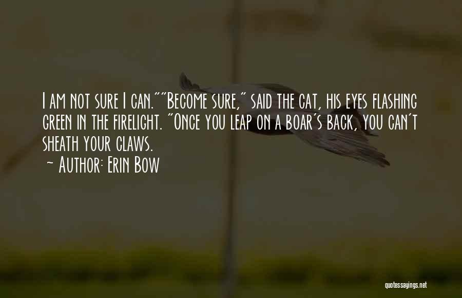 Erin Bow Quotes 460628
