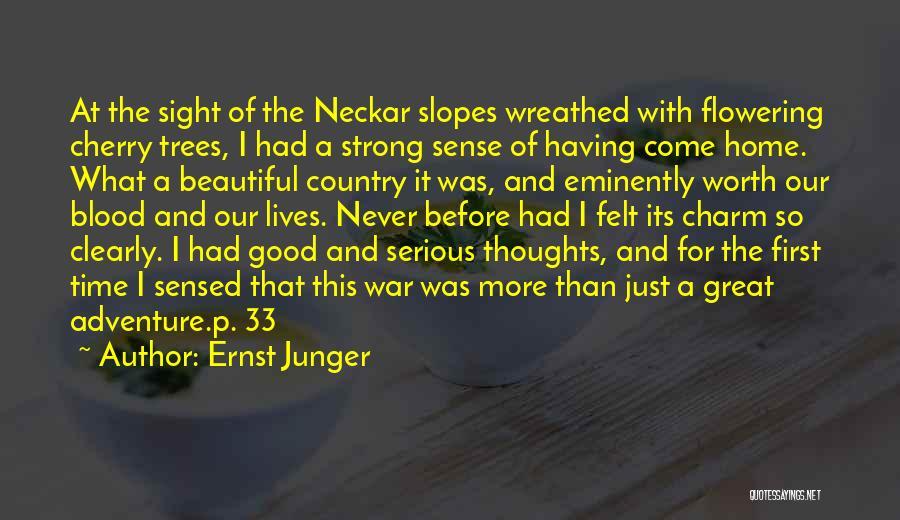 Ernst Junger Quotes 363271