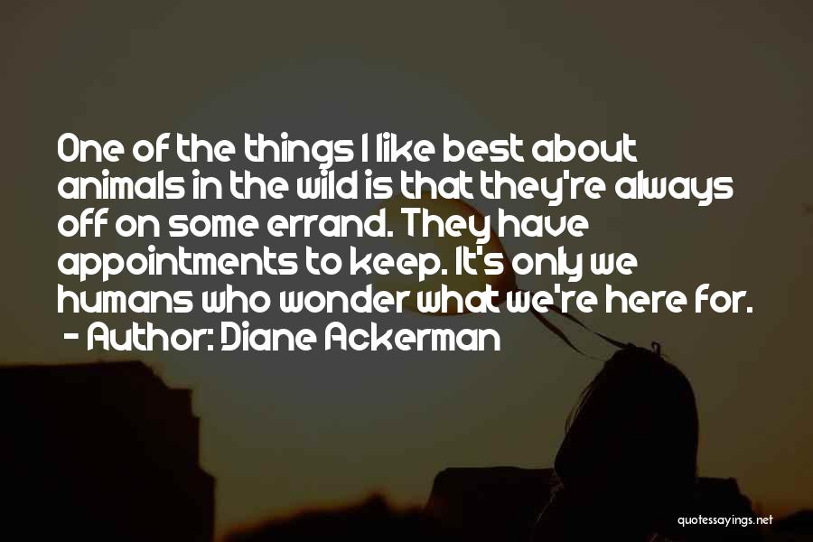 Errands Quotes By Diane Ackerman