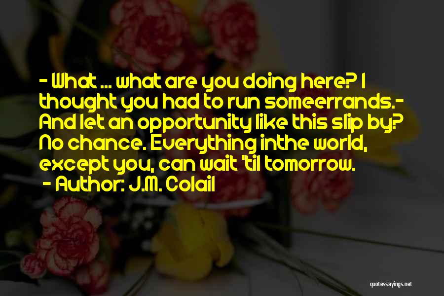 Errands Quotes By J.M. Colail