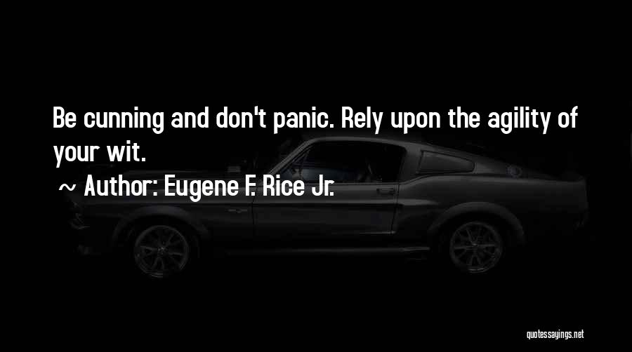 Eugene F. Rice Jr. Quotes 201577