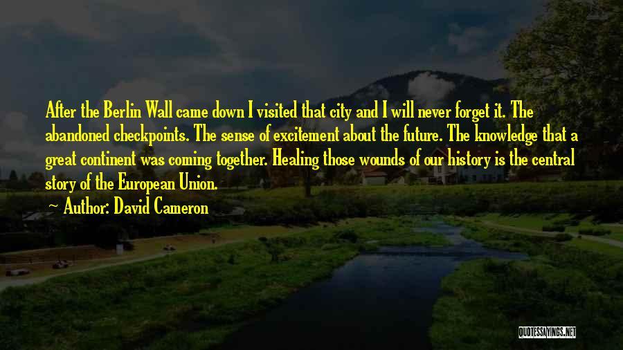 European Quotes By David Cameron