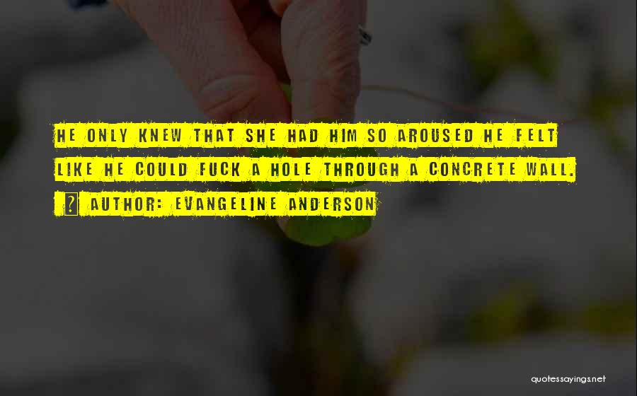 Evangeline Anderson Quotes 701331