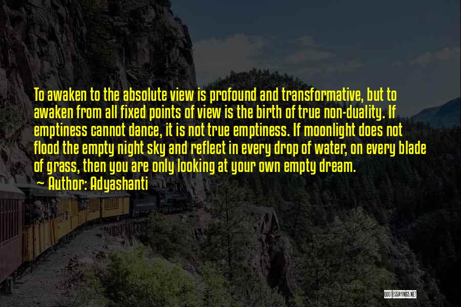 Every Drop Of Water Quotes By Adyashanti