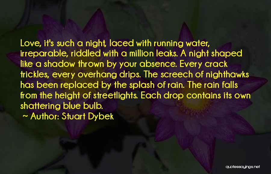 Every Drop Of Water Quotes By Stuart Dybek