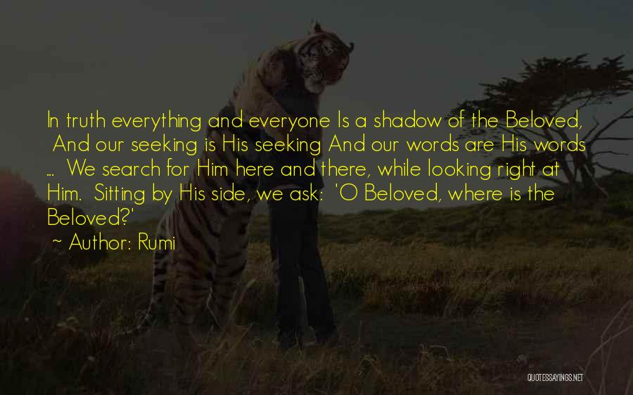 Everyone Has The Right To Love Quotes By Rumi