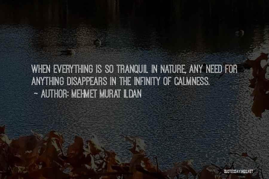 Everything Disappears Quotes By Mehmet Murat Ildan