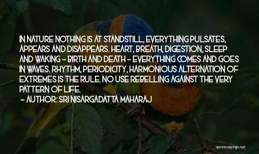 Everything Disappears Quotes By Sri Nisargadatta Maharaj