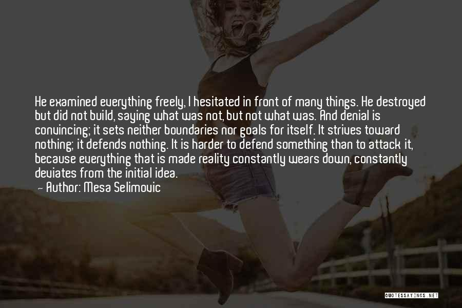 Everything Is Destroyed Quotes By Mesa Selimovic