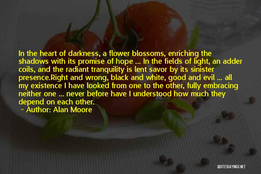 Evil Sinister Quotes By Alan Moore