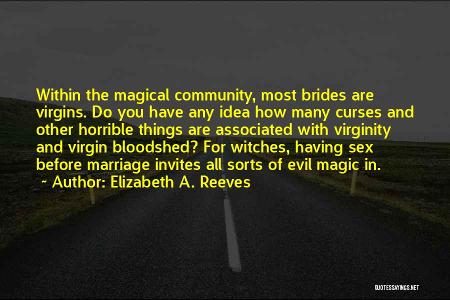 Evil Witches Quotes By Elizabeth A. Reeves