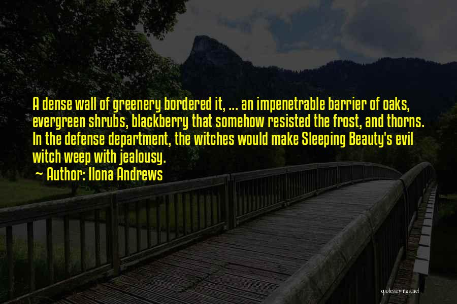 Evil Witches Quotes By Ilona Andrews