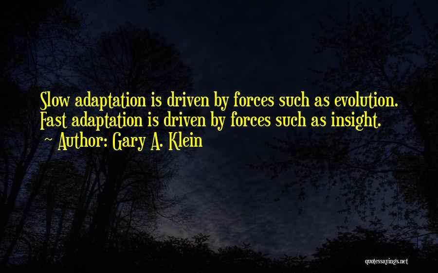 Evolution Quotes By Gary A. Klein