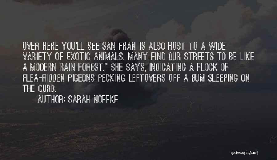 Ex Leftovers Quotes By Sarah Noffke