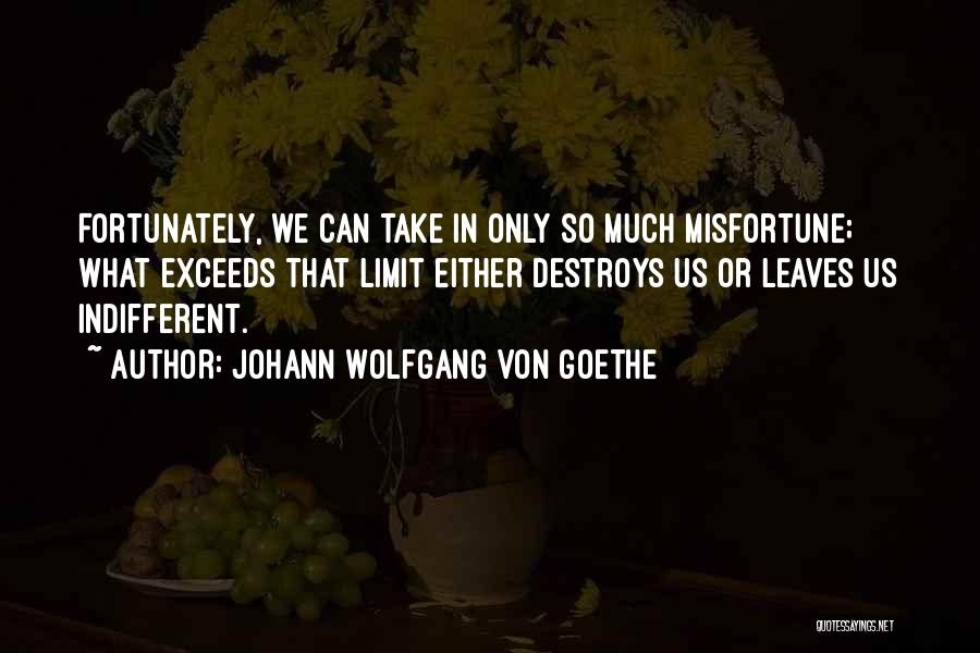 Exceed Quotes By Johann Wolfgang Von Goethe