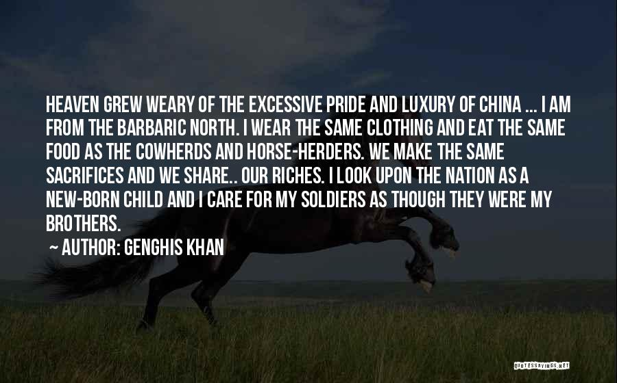 Excessive Care Quotes By Genghis Khan