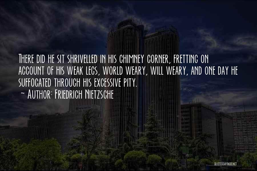 Excessive Quotes By Friedrich Nietzsche