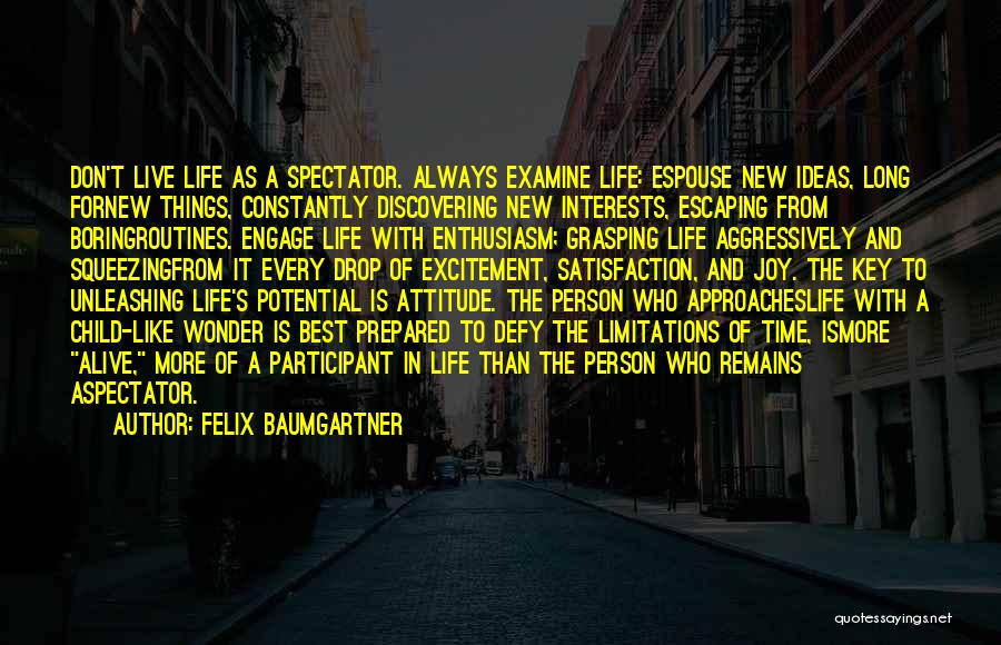 Excitement For Life Quotes By Felix Baumgartner