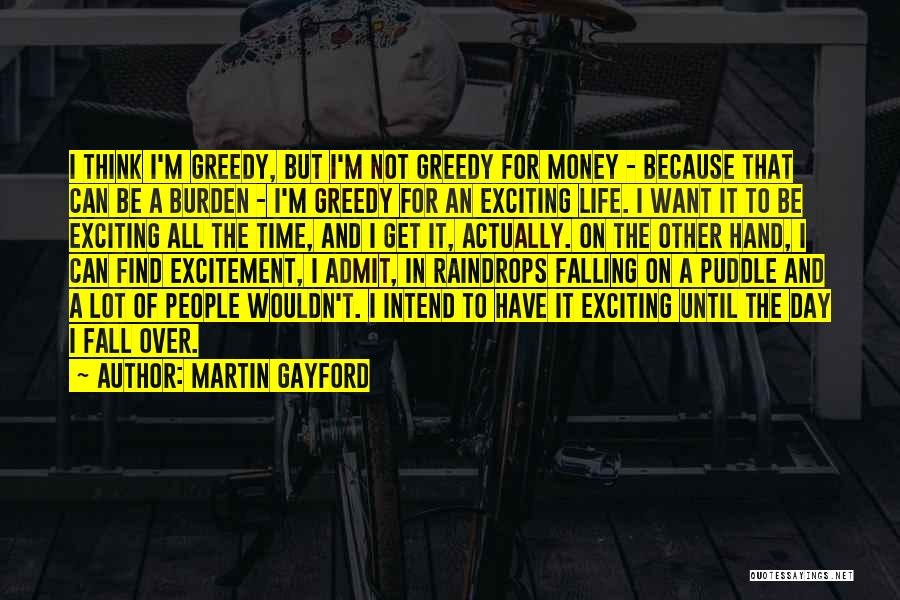 Excitement For Life Quotes By Martin Gayford