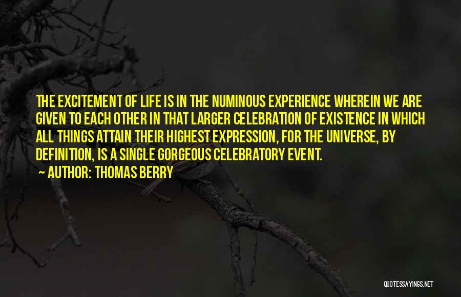 Excitement For Life Quotes By Thomas Berry